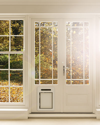 Inside view of petWALK pet door medium into white glass door