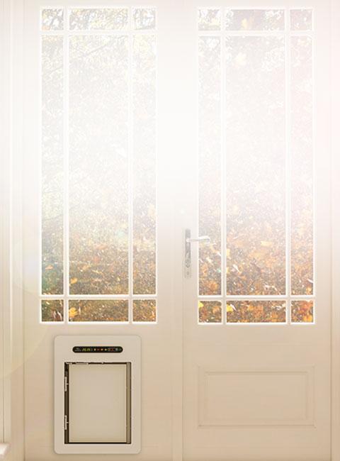 petWALK Hundetüre / Hundeklappe für Einbau in Wand, Glas, Türe, Isolierglas.